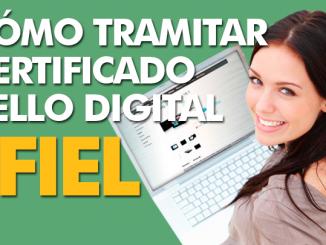 Cómo tramitar Certificado de Sello Digital en el SAT La Paz BCS México.