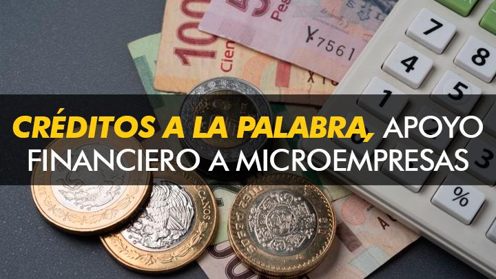 """""""Créditos a la palabra"""" Apoyo financiero a las Microempresas familiares"""